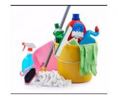 Días de limpieza